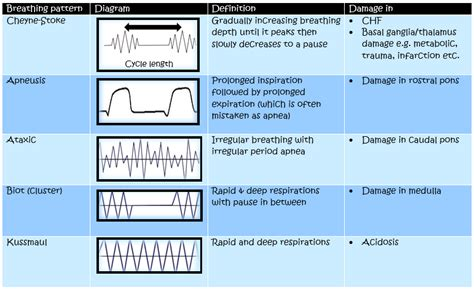 breathing pattern messed up respiratory rate and breathing patterns medicalrojak
