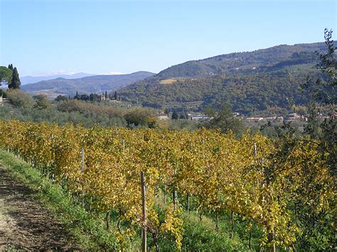 best tuscany agriturismo best agriturismo tuscany best agriturismo italy best
