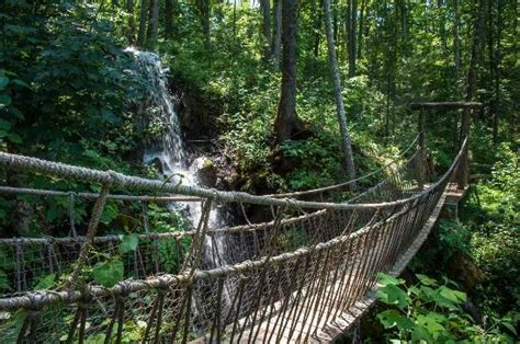 swinging bridge tennessee bridge across waterfall picture of foxfire mountain