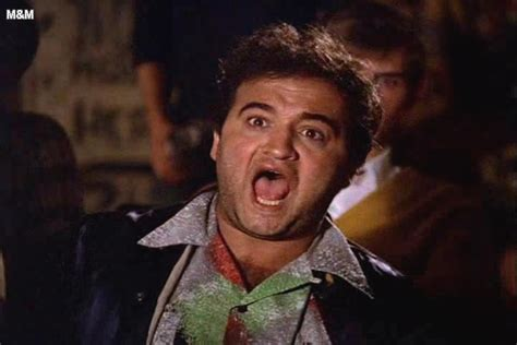 john belushi animal house music graffiti john landis animal house 1978