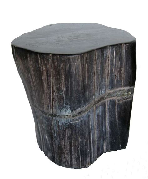 Petrified Wood Stool by Petrified Wood Stool Or Side Table At 1stdibs