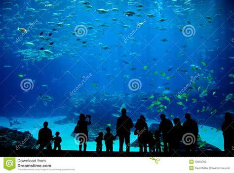 aquarium design eps aquarium cartoon vector cartoondealer com 14275763