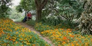 Fullerton Botanical Garden S Day At The Fullerton Arboretum