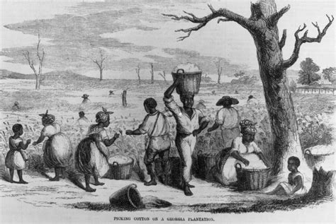 Southern Planters Considered Their Slaves To Be by 19c American Slaves Working