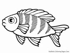 Galerry animals sea coloring
