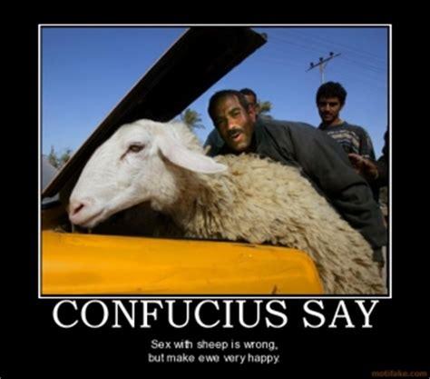 confucius says life quotes funny