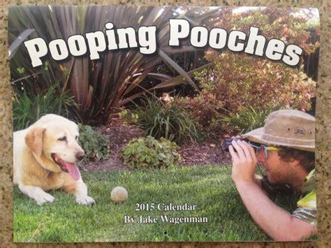 dogs pooping calendar 2015 pooping dogs calendar creepbay