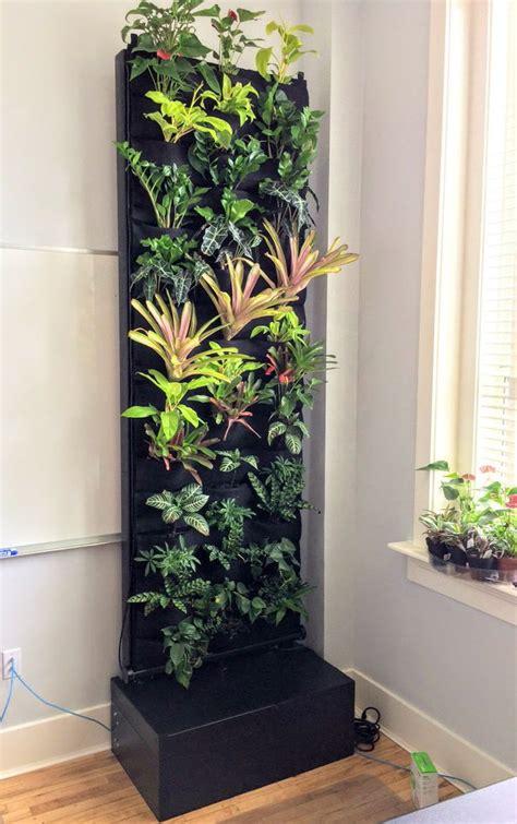 indoor vertical garden ideas images  pinterest