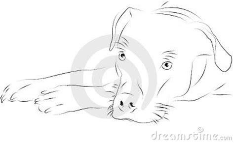 blanco y negro pintura lineal dibujar caballo ilustraci 243 n perro como dibujo lineal foto de archivo imagen 22993140