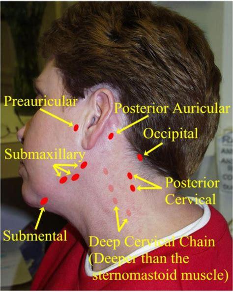 examining the neck