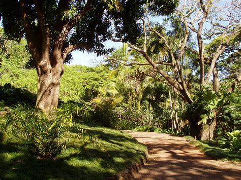 Allerton Garden Kauai by File Allerton Garden Kauai Hawaii Garden Walk Jpg