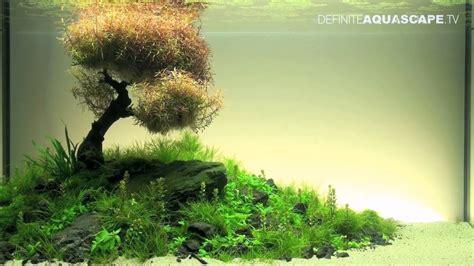 Aquascaping Tanks Aquascaping The Art Of The Planted Aquarium 2012 Xl
