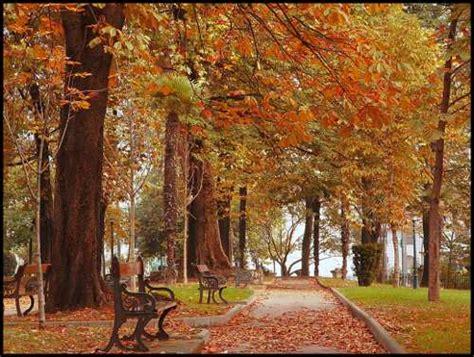 imagenes de otoño y primavera 161 feliz oto 241 o y feliz primavera decoracion in