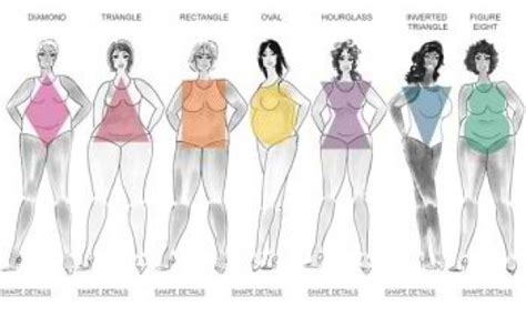 body types and shapes embracing accentuating your shape dailyvenusdiva com