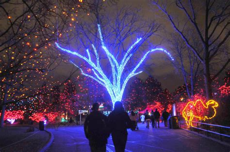 denver holiday lights visit denver