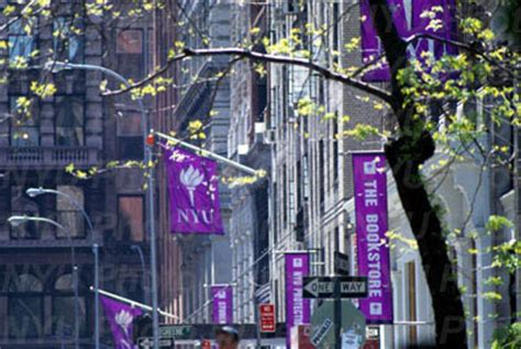 nyu housing image gallery nyu housing