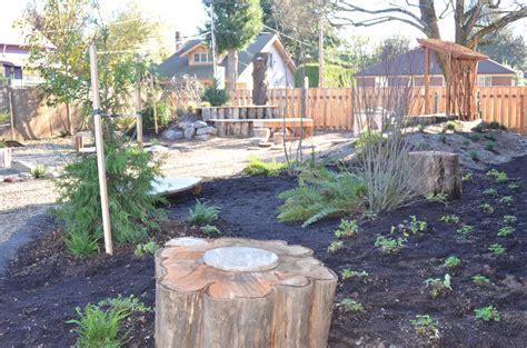 broken social scene backyards 100 broken social scene backyards tree branch