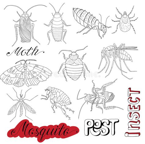 doodle bug bite set with cockroaches and pests stock vector image 71756274