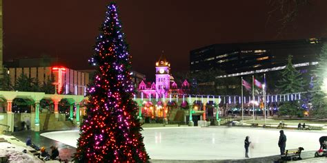 28 best calgary christmas trees calgary christmas tree