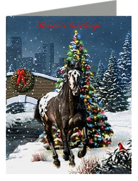 horse christmas cards pet holiday cards