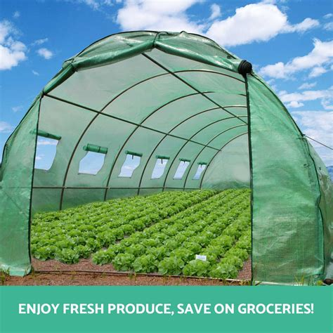 Plant Shed by 6x3x2m Walk In Greenhouse Green House Plant Shed Pe Cover