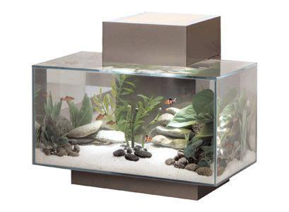 aquarium design edge a fluval edge aquarium will bring a great zen feeling to