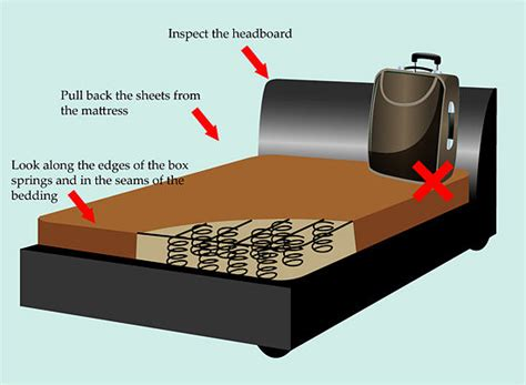 what keeps bed bugs away how to get rid of bed bugs the complete guide 13 most