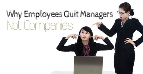 When To Quit Your Before Mba by 16 Reasons Why Employees Quit Managers Not Companies