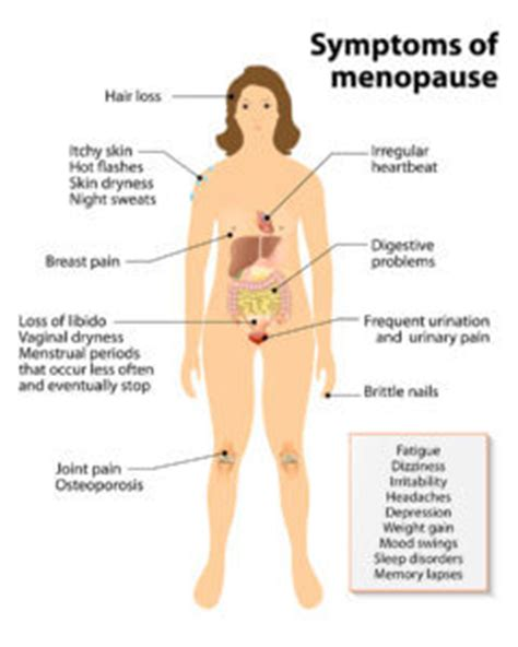 hot flashes mood swings depression phytoestrogens help reduce menopause symptoms a natural