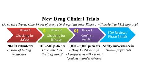 Clinical Trials In Health Therapeutics And You Exploring The Biology Of