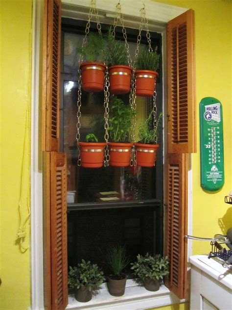 hanging window herb garden save yourself a trip to the market build your own hanging window herb garden 171 i d rather be in