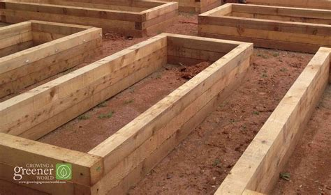 three key benefits of gardening in raised beds growing a