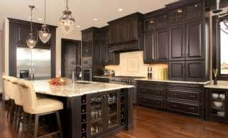 Kitchens With Black Cabinets Kitchen Cabinet Stains Improving Modern Interior Mykitcheninterior