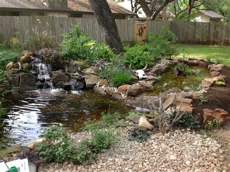 michael s backyard pond with waterfall and bog filter