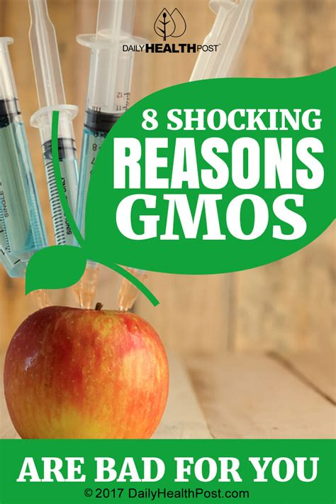 are gmos bad for your health if you re asking this question you re probably missing the point 8 shocking reasons gmos are bad for you