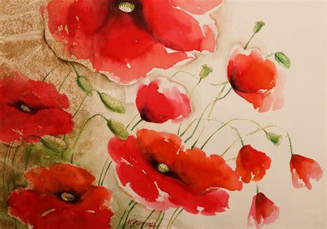 papaveri fiori papaveri flowers