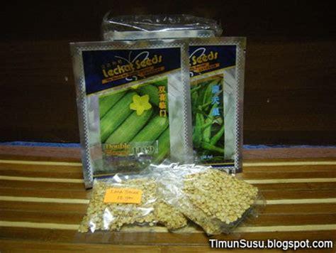 Benih Timun Lalap Cucumber Seed ladang fertigasi sayuran dan buah buahan benih timun