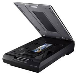 epson perfection v550 photo color scanner epson perfection v19 color scanner
