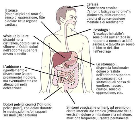 alimentazione e fibromialgia the world s catalog of ideas