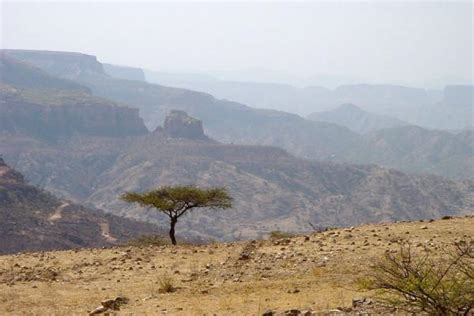 Eritrea Landscape Pictures Hamm Travel Story And Pictures From Eritrea