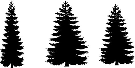 Pine Tree Outline by Pine Tree Outline Clipart 51