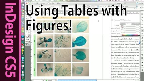 tutorial using tables in indesign cs5 to create clearly