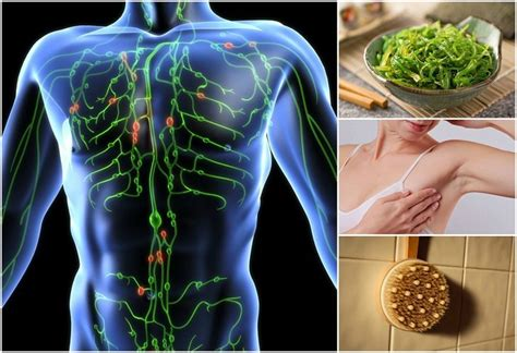 Circles During Detox by Signs Your Lymphatic System Is Clogged And How To Repair