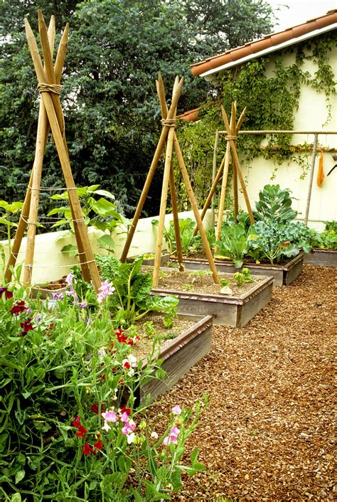 vegetable beds cedar raised garden bed plans memes