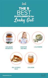 Leaky Gut Detox Diet by The 5 Best Supplements For Leaky Gut