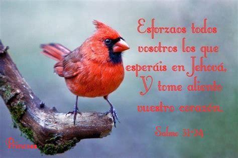 imagenes cristianas en portugues tarjetas y postales cristianas gratis god l ves you quot radio quot