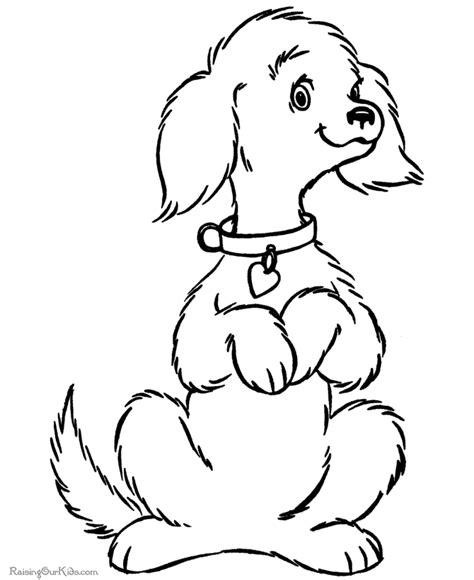coloring pictures of small dogs free coloring pictures to print 071