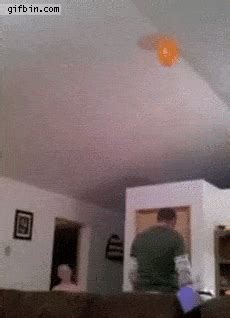 21 best gifs of all time of the week #160 funny or die