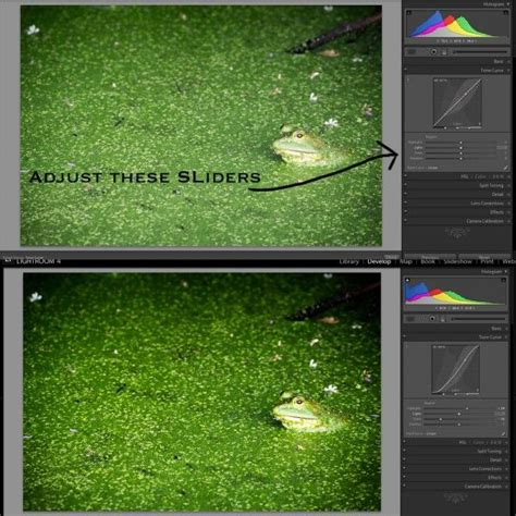 tutorial tone lightroom android 17 best images about lightroom lesson tips and tricks