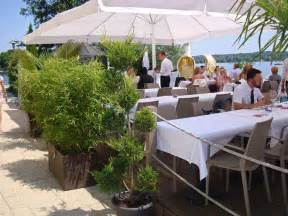 terrasse pflanzen bambus als sichtschutz f 252 r terasse und balkon bambus und